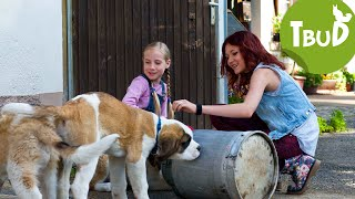 Welpenschutz (Folge 59) | Tiere bis unters Dach | SWR Kindernetz