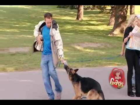 JFL Hidden Camera Pranks & Gags: Dog Eat Dog
