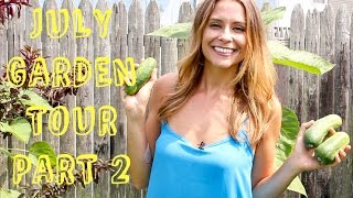 July Garden Tour Part 2 - Welcome to the Jungle! Cukes, zuchs, tomatillos and tomato problems!