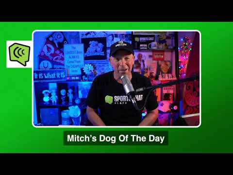 Mitch's Dog of the Day 11/30/20: Free College Basketball Betting Picks Predictions and Betting Tips