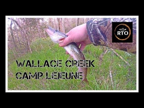 Camp Lejeune - Wallace Creek - Spring Fishing