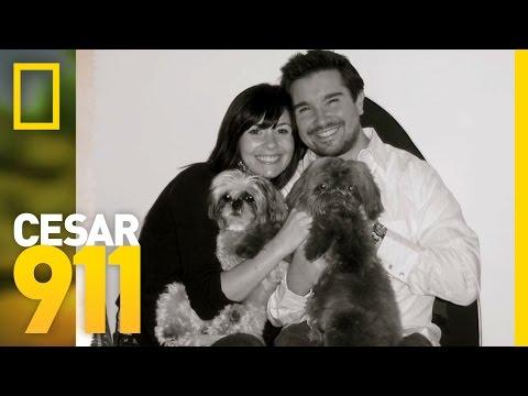 Case File: Auggie   Cesar 911