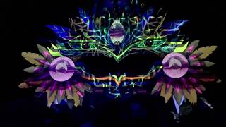Insector Live @ Ozora one day in Mexico