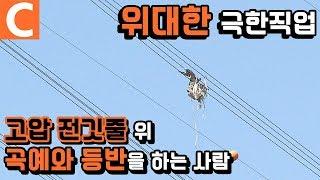떨어진 자는 말이 없다, 시청자가 뽑은 극한직업 1위 '송전탑 전기원'