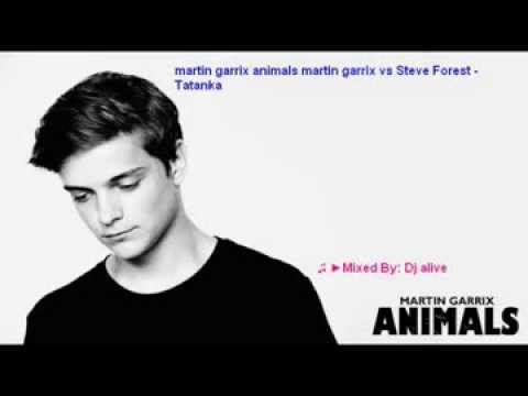 Martin garrix animals vs Steve Forest - Tatanka  mashup 2014