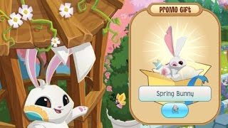 Animal Jam SPRING BUNNY Membership (Gift from AJHQ) ft. proven