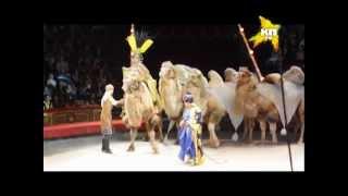 Шоу «Остров грез» в Цирке на проспекте Вернадского
