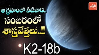 Scientists Found New Planet with Water | K2-18 b Planet | Habitable Planet