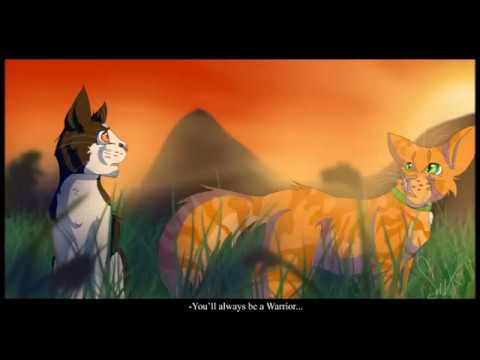 Tallstar and Jake (Warrior Cats Speedpaint) - YouTube