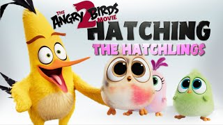 Angry Birds Movie 2 | Hatchling Cuteness