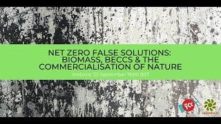 Net Zero False Solutions: Biomass, BECCS & the Commercialisation of Nature Webinar