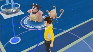 A Wild Miltank Has Appeared! Is Miltank A Rare Spawn? Pokemon GO Gen 2 Gameplay