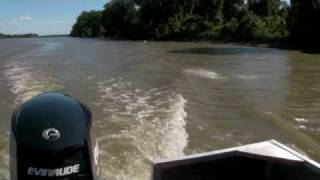 Tracking Asian Carp In The Mississippi