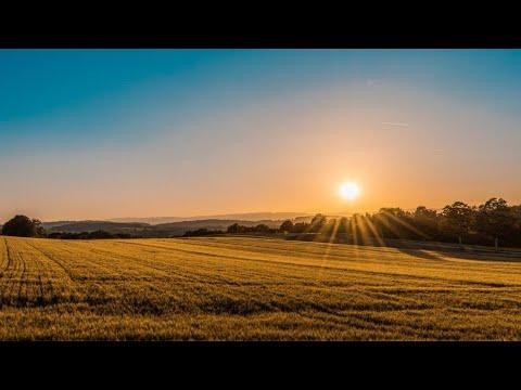 Hammani Yig'latgan😥😥😥 Juda Ta'sirli Hayotiy Voqea. #panjakentv
