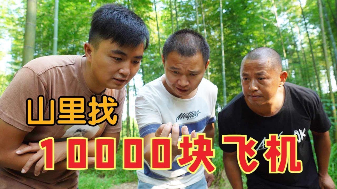 【农村四哥】10000块飞机掉进竹海,三兄弟出发寻找,没想到还有意外收获