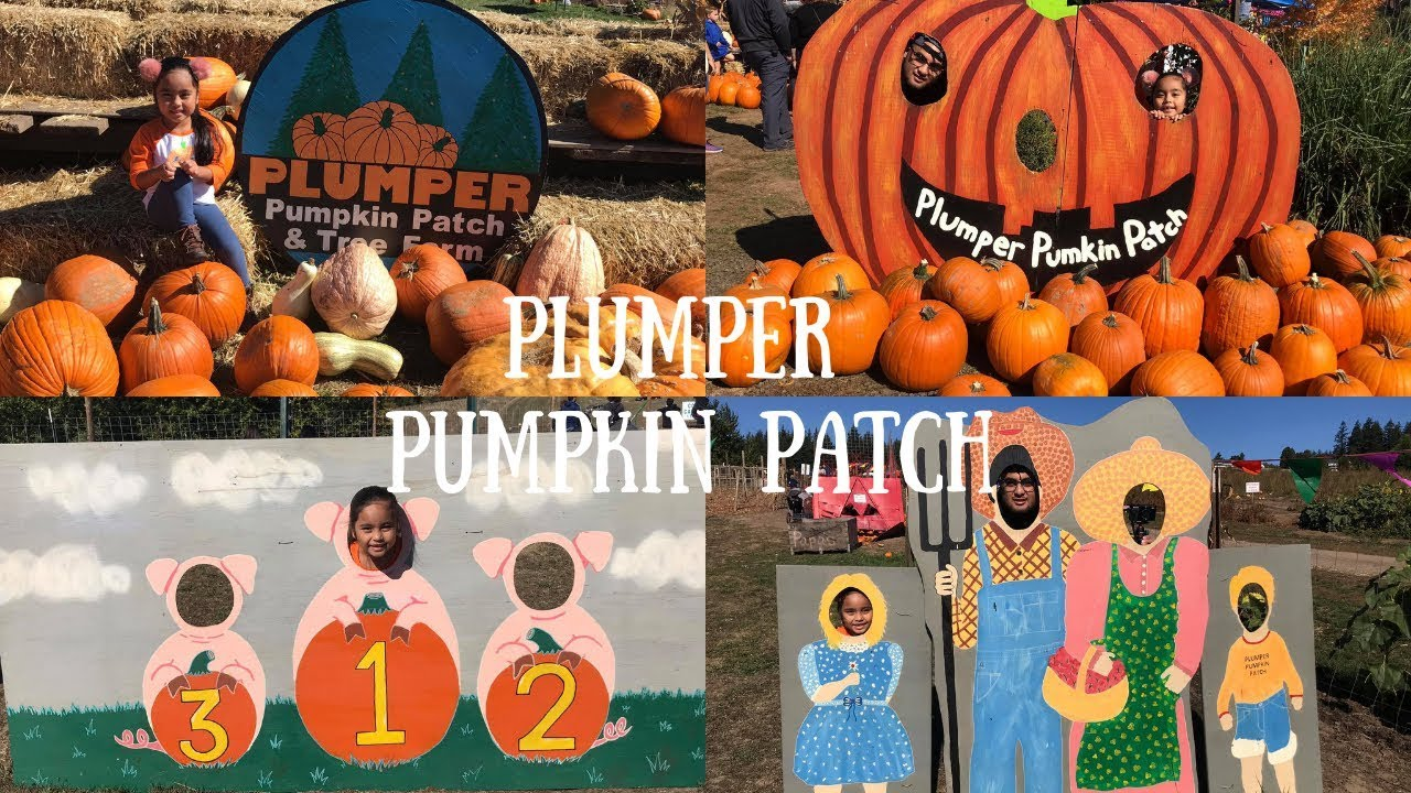 Plumper Pumpkin Patch Melia S Playhouse Youtube