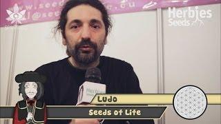 Seeds Of Life @ Spannabis 2014 Barcelona