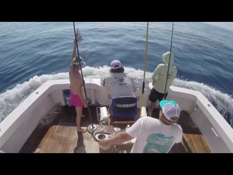 Reel Addiction Mississippi Gulf Coast Billfish Classic 2017