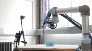 On the origin of (robot) species thumbnail