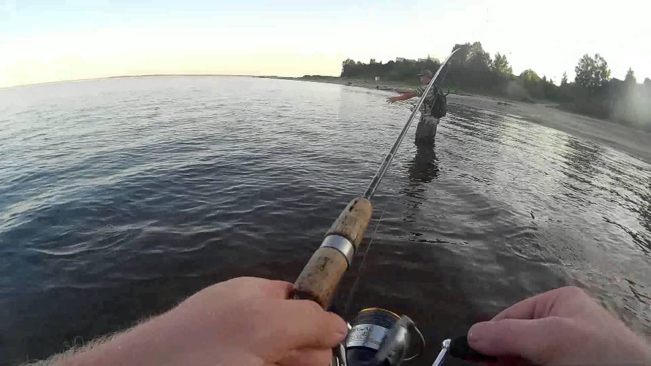 ловля щуки на реке оби