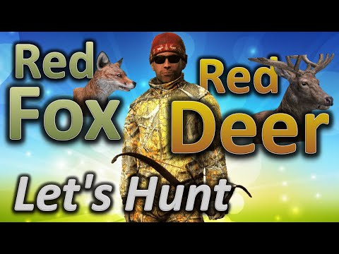theHunter Let's Hunt RED FOX and RED DEER
