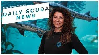 Daily Scuba News - Jennifer Dianto Kemmerly Honored As A Sea Hero