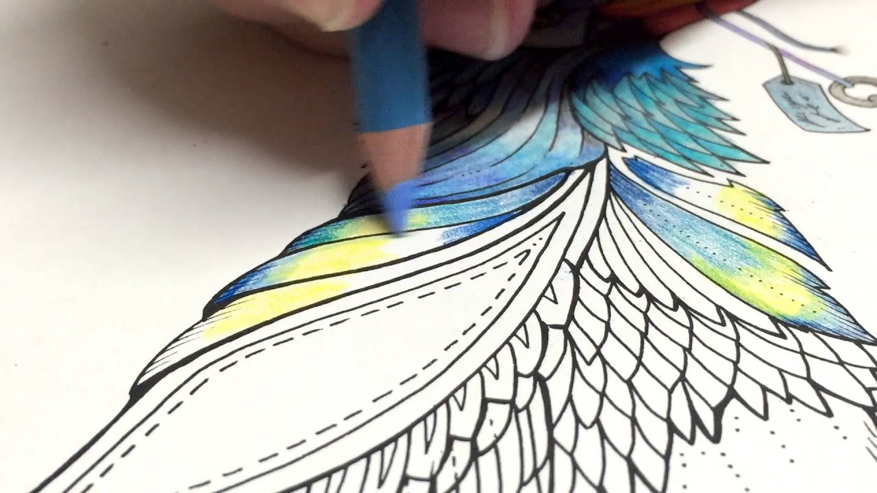 Colored Pencils For Grown Up Coloring ASMR Adult Coloring Enchanted Forest Blue Bird 6