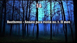 Los 15 Adagios Más Famosos De La Música Clásica