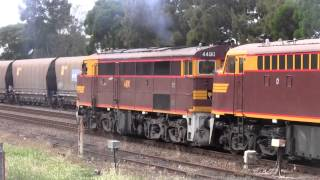 NSW Diesel Locomotives Throughout 2014