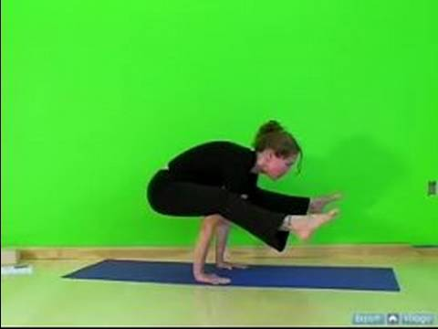 Advanced Arm Balance Yoga Poses Flying Insect Pose Arm