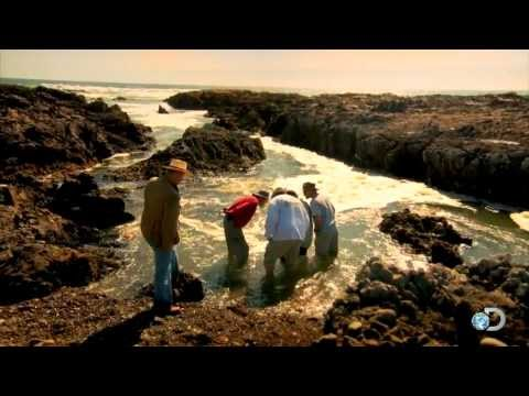 A Gold Rich Beach | Gold Rush: South America