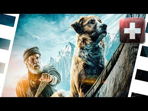 Kino+ #288 | Ruf Der Wildnis, Fantasy Island, Brahms: The Boy 2, Limbo