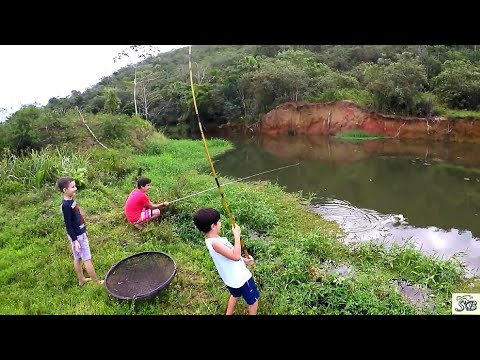 TEM MAIS PEIXES DO QUE ÁGUA! Pescaria