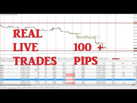 forex-for-beginners,-live-trading,-100+-pips-profit,-entry-points,-mt4,-orders,-stops,-alarms
