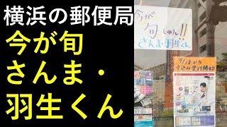 【羽生結弦】横浜の郵便局「今が旬 さんま・羽生くん」 羽生結弦 検索動画 30