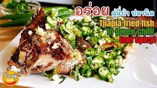 ฉู่ฉี่ป่า ปลานิล สูตรคุณพ่อ  l Tilapia fried fish in green chilli not spicy