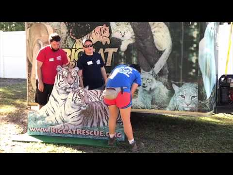 25 Years of Big Cat Rescue