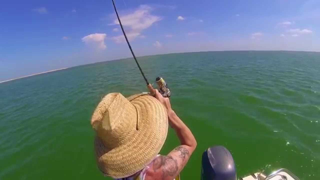How to saltwater fishing at low tide youtube nvjuhfo Choice Image