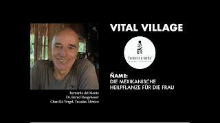 Vital Village Talk 1: ÑAME