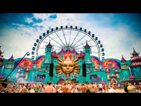 Top 20 Sgs Of Tomorrowland 2013