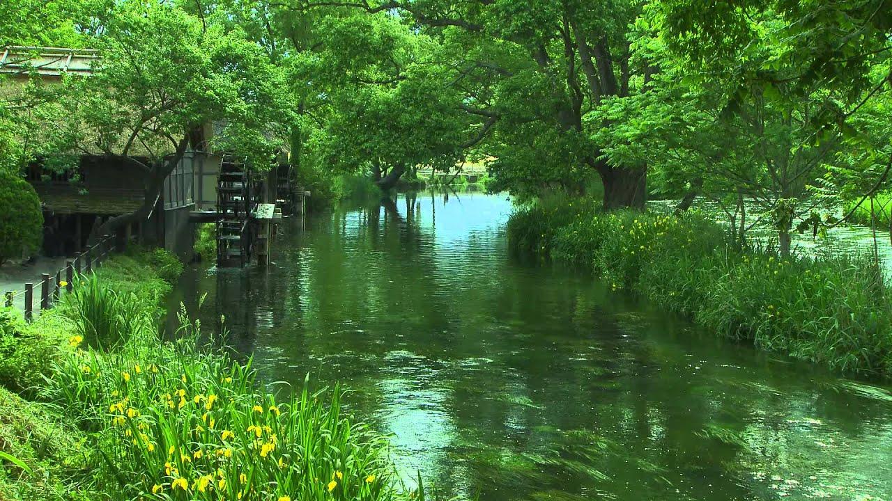 Relaxing Nature Sounds.10min.calming river sounds - YouTube Relaxing Nature Sounds