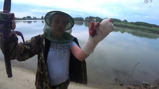 рыбалка на кубани рыбалка краснодарский край рыбалка на реке кубань рыбалка в краснодарском крае