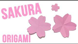 Flor Sakura de papel - Origami