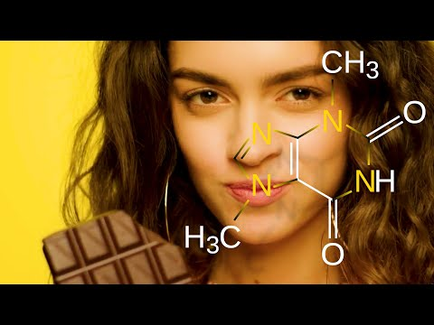 The Science Of Chocolate -  Cacao, Theobromine, & Cocoa Butter