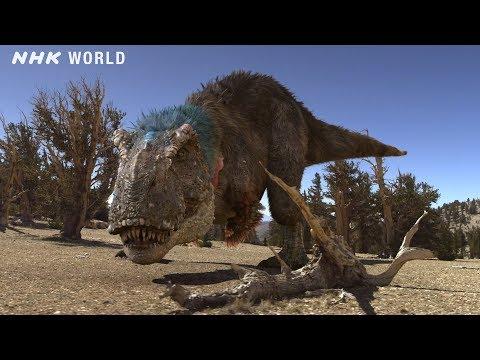 Tyrannosaurus: The Feathered Tyrant - DINOSAURS