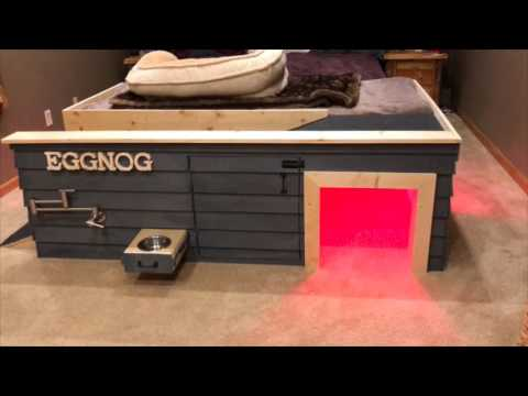 Pimp My Doghouse-Custom Built Doghouse For Bulldog - YouTube