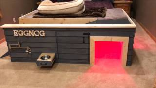 Pimp My Doghouse-Custom Built Doghouse For Bulldog