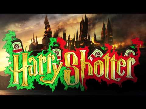 Harry Shotter 2014 (Original Mix) - Aidan...