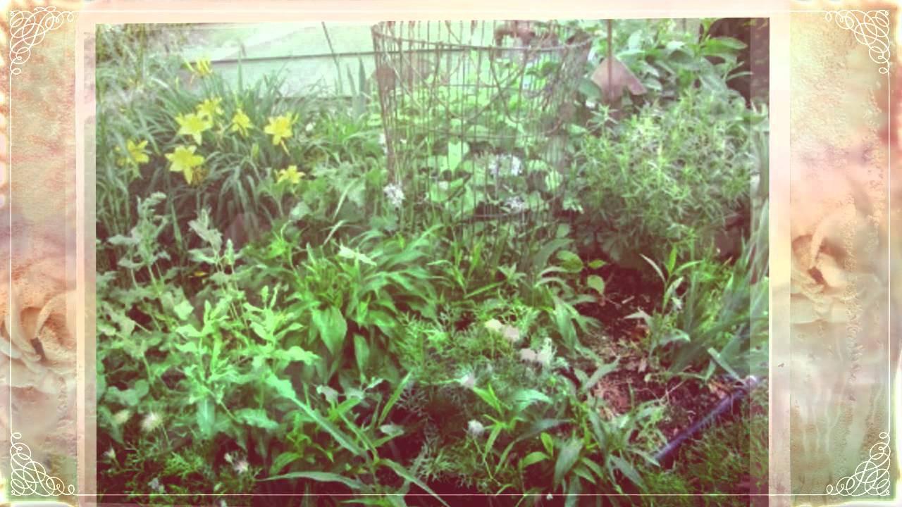 Сад своими руками, просто и со вкусом