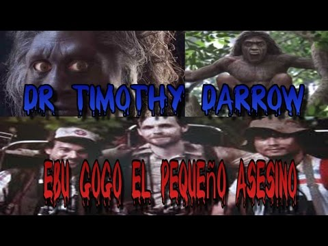 El caso Dr Timothy Darrow y el Ebu Gogo, Pequeños Canibales en indonesia 2016